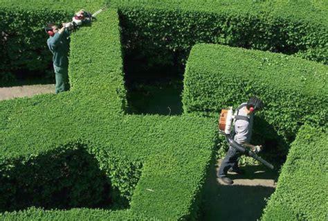 giardiniere roma comunicati sta