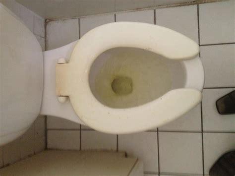 bathroom use control bdsm serena inn bewertungen fotos homestead fl
