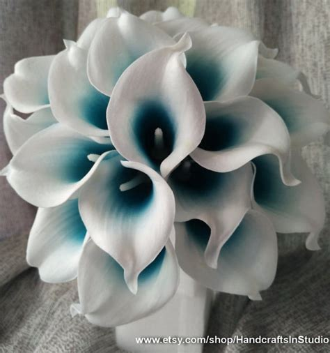 best 25 calla lily colors ideas on pinterest calla