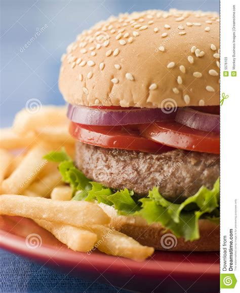 beef burger   sesame seed bun  fries stock