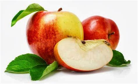 groundhog day kinopoisk manfaat dan khasiat buah apel 28 images buah buahan