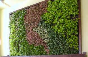 Green Walls by Green Wall Archives Eco