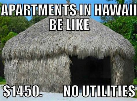 Hawaii Meme - 21 hilarious hawai i memes that are too real for locals