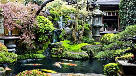 backyard koi pond waterfall garden ideas