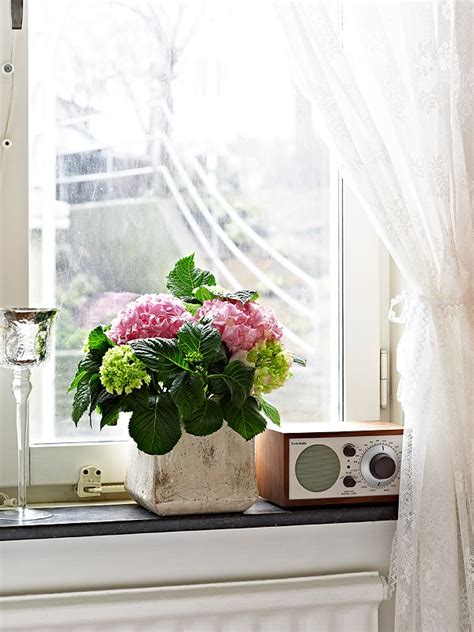 Flowers For Kitchen Windowsill 1000 Ideas About Window Sill Decor On Window