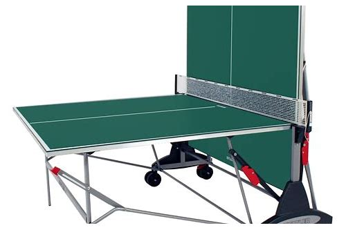 ping pong table coupons