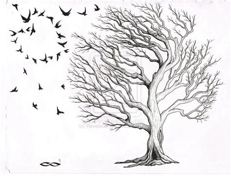 oak tree by revelationink on deviantart