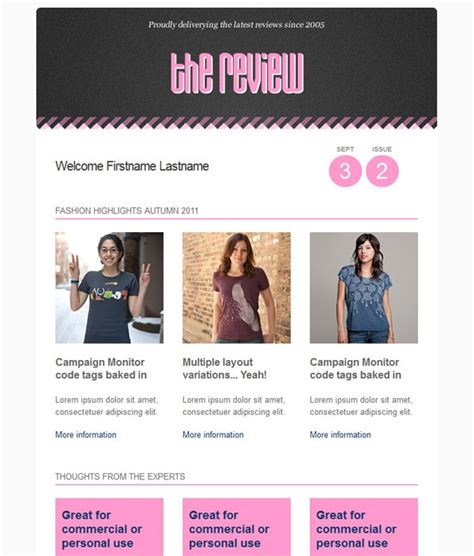 Fashion Resume Examples by Email Newsletter Templates 40 Hand Picked Premium Designs