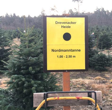 kinderspa 223 weihnachtsbaum selber schlagen
