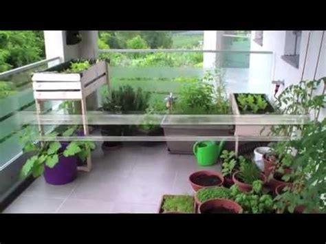 garten balkon mein balkon garten tagebuch 20 mai kr 228 uter gem 252 se auf