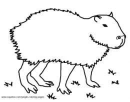 free coloring pages of capybara