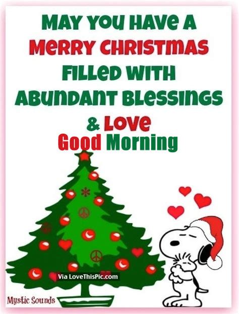 how to enjoy christmas when you have no money may you a merry filled with abundant blessings morning pictures
