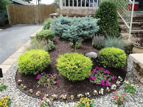 shrubs  landscaping south jersey landscape design