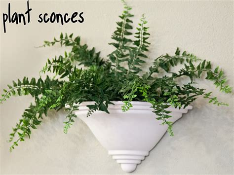 Plant Sconce plant sconces add plant wall sconces to your decor windowbox windowbox