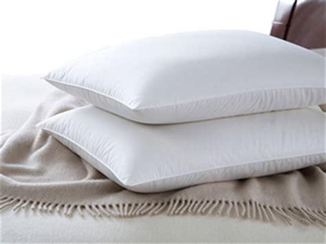 european goose pillows cuddledown organic 700 fill power european white goose