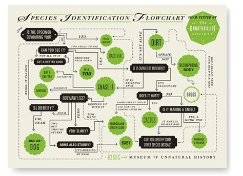cool flowcharts quot the museum of history quot flowchart by lliver