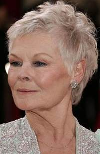 judy dench hairstyle front and back short hairstyle 2013