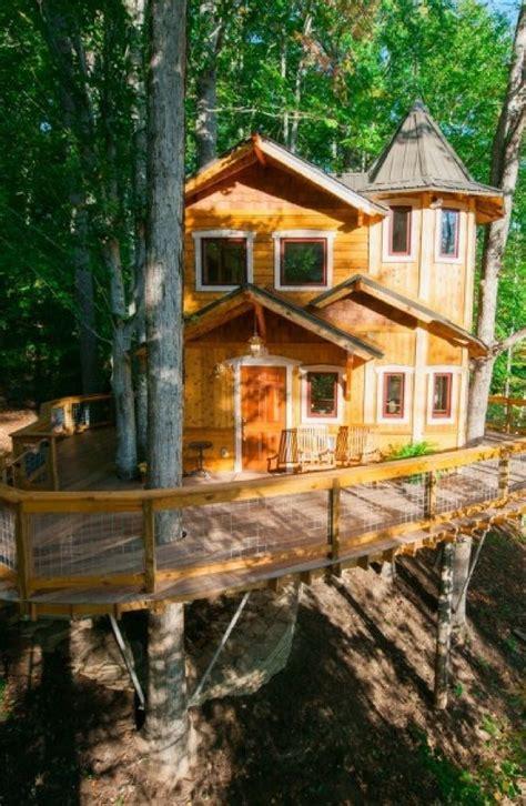 unique luxurious tree house hotel   spacious wrap