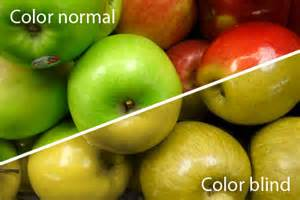 what color blind see colour blindness what do you see