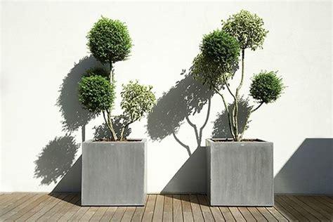 vasi da esterno alti vasi esterno design vasi