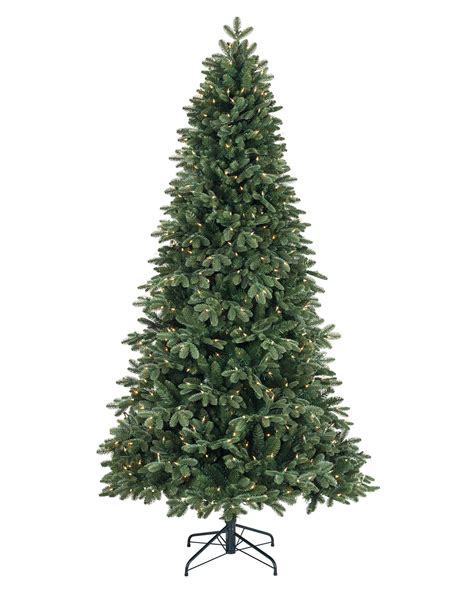 Good Slim Christmas Trees For Sale #6: Fraser-fir-christmas-tree-2.jpg