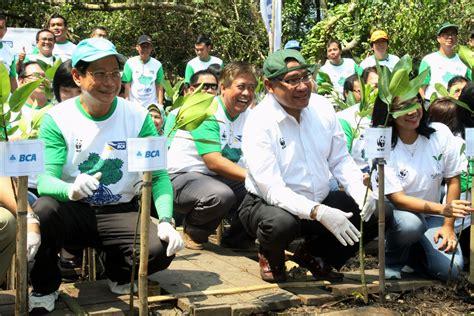 Peduli Lingkungan peduli lingkungan dengan tanam pohon mangrove