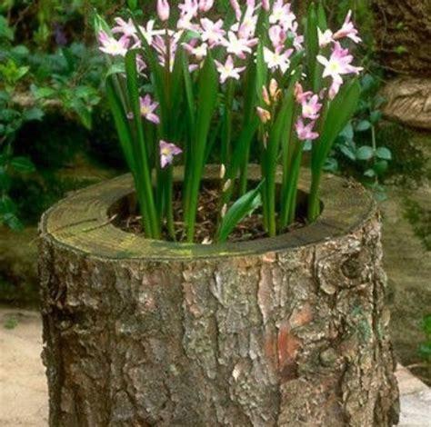 Tree Stump Planter by Tree Stump Planter