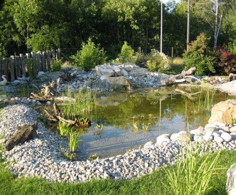 Natural Pool galerie