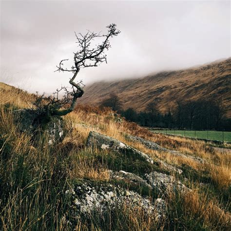 Landscape Composition 10 Composition Tips For Stunning Iphone Landscape Photos
