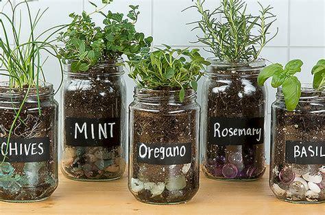 windowsill herb garden diy and how to indoor herb garden windowsill ideas no 18