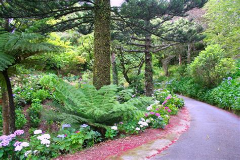 Botanical Gardens New Zealand Wellington Cable Car And Botanical Gardens Attractions Geoblog New Zealand Travel