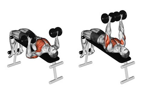 bench press for pecs decline chest press en variaties krachttraining net