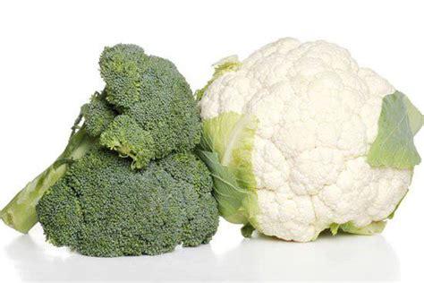 alimenti tumorali 6 alimenti antitumorali per eccellenza ricette di