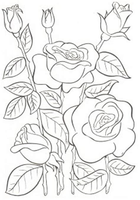 imagenes de flores para bordar a mano dibujos y plantillas para imprimir dibujos de flores para