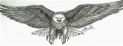 eagle tattoo designs free eagle tattoo free tattoo pictures