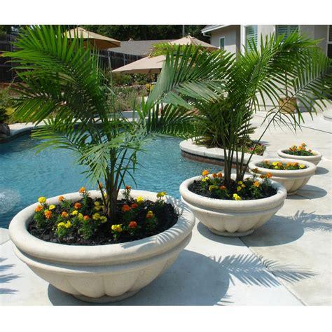 Tree Planter Pots by Tips Of Selecting Tree Planter Box Homesfeed