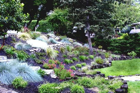 uphill backyard landscaping uphill landscaping ideas