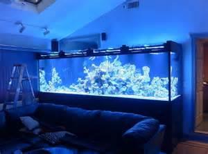 Aquarium Maintenance   Saltwater Fish   Fish Tank Service   Reef