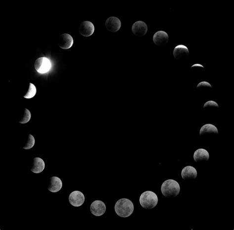 Circle The Moon pretty moon phases
