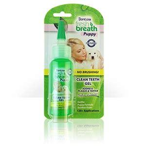 puppy teething gel tropiclean fresh breath puppy clean teeth gel