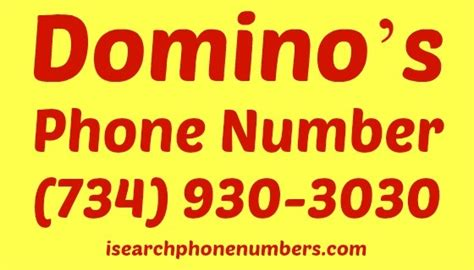 domino pizza delivery number domino s phone number order pizza delivery customer care