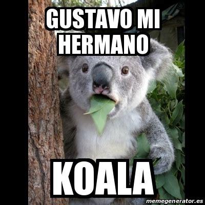 Meme Generator Koala - meme koala gustavo mi hermano koala 17047871