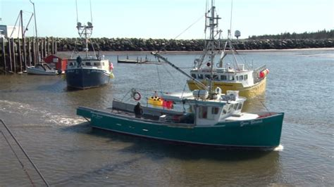 fishing boat builders nova scotia maritime boat building boom fuelled by lobster industry