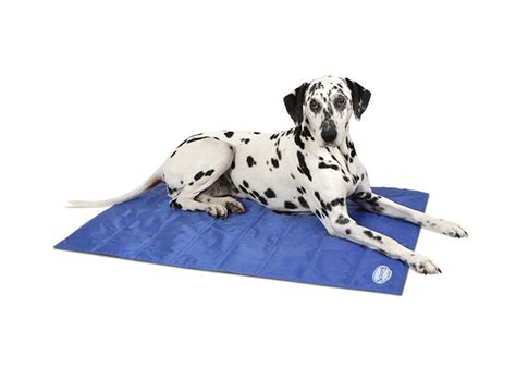 Stay Cool Mat by Cool Mats And Chill Out Angell Pets The Friendliest