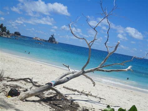 turisti per caso seychelles mah 232 anse soleil viaggi vacanze e turismo turisti