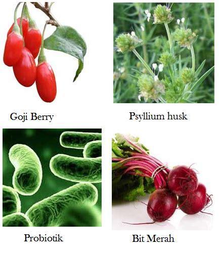 Obat Herbal Detox Usus obat bahan alam medicine cara mengecilkan