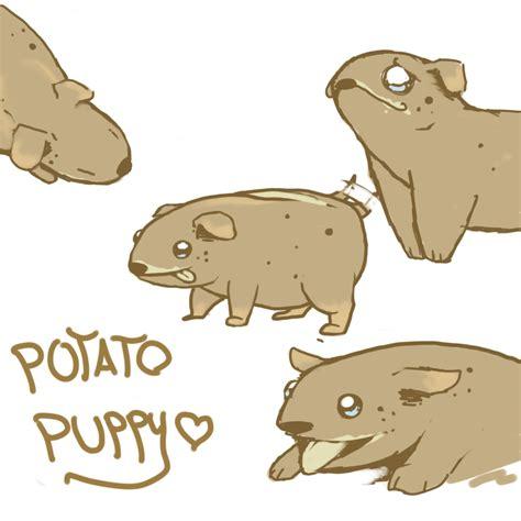 potato puppy potato puppy by yuna on deviantart