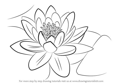 how to draw hands by lily draws on deviantart watercolor water lilies painting white water lily hand