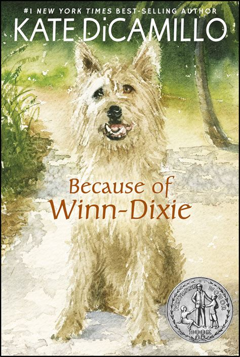 because of winn dixie pictures from the book because of winn dixie by kate dicamillo book and