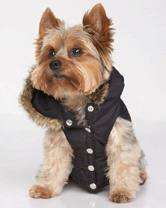 yorkie supplies 17 best images about yorkie accessories on carrier pets and yorkies